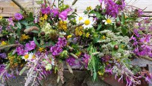 rynias-kwiaty